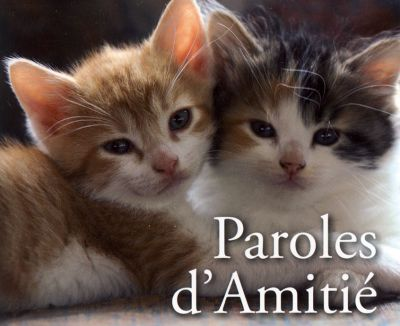 Mp - Paroles d'Amitié