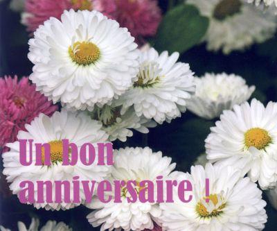 Mp - Un bon anniversaire !